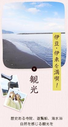 伊豆・伊東を満喫! 観光 歴史ある寺院、遊覧船、海水浴、自然を感じる観光を
